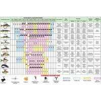 Календарь рыболова на 2021 год