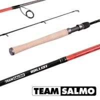 Спиннинг Team Salmo BALLIST 6.1ft 5-22g
